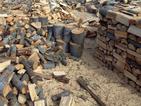 3-месечен мораториум за износ на необработена дървесина