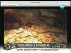 """Реакция след сигнал в """"Моята новина"""" за хлебарки в зоопарка"""