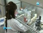 Японски учени откриха нов метод за добиване на стволови клетки