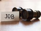 Безработицата в последните три месеца на 2015 г. – 7,9%