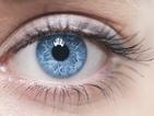 Човешкото око възприема цветовете различно в зависимост от сезона