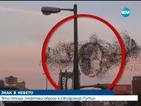 Ято птици очертаха образа на Владимир Путин