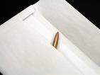 Писмо с куршум за зам.-шефа на Сметната палата на Гърция