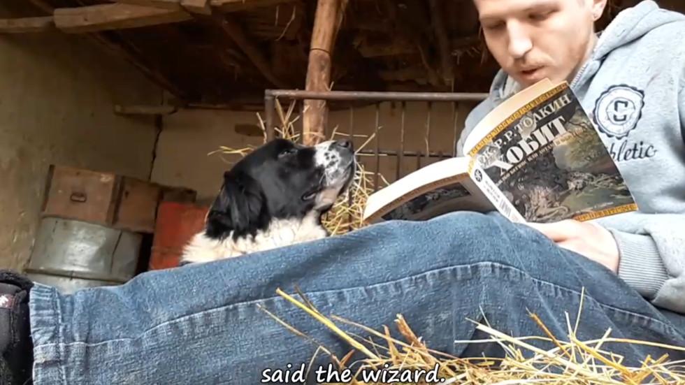 """Животни слушат четене на Толкиновата книга """"Хобит"""""""