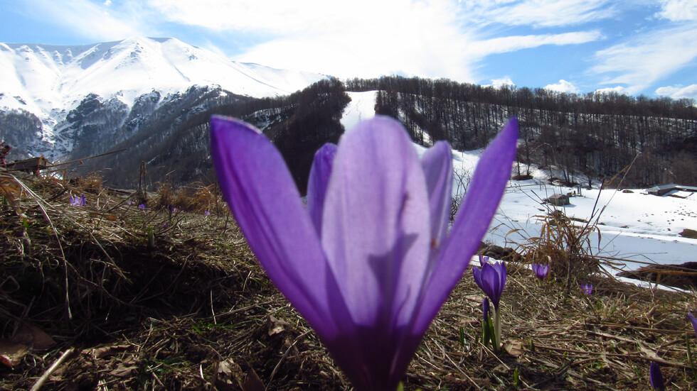 """Пролет на хижа """"Плевен"""""""
