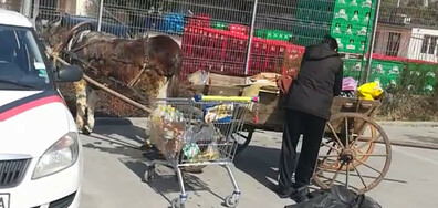 Паркинг за животни и каруци - абсурд!