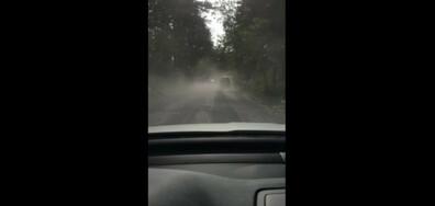 Чист планински въздух