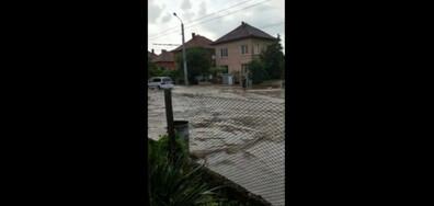 Порой във Враца