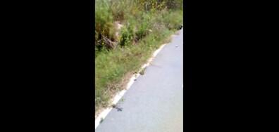 Велоалеите в Бургас - опасни!