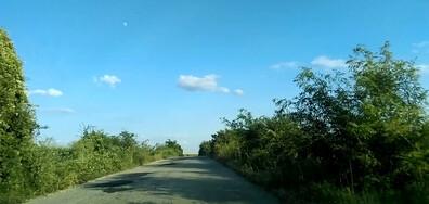 Асфалтиран път