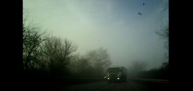 Шофиране в мъгла
