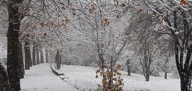 Първо снежно утро от Разград