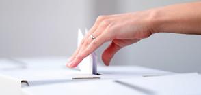 Започна гласуването на предсрочните президентски и парламентарни избори в Турция