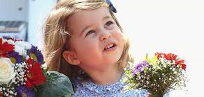 НАЙ-ЧЕТЕНОТО ПРЕЗ 2018: Принцеса Шарлот - 3 години в 33 кадъра (ГАЛЕРИЯ)