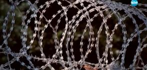 """Темата """"бежанци"""" отново скара БСП и управляващите (ОБЗОР)"""