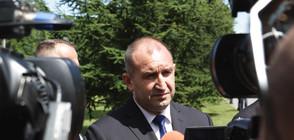 Радев: Протестът на животновъдите и оставките не решават проблема (ВИДЕО)
