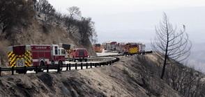Пожарите в Калифорния се разрастват (ВИДЕО)