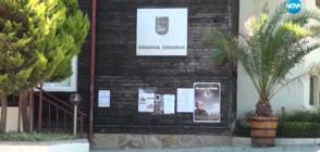 """Откриват 34-тото издание на """"Аполония"""" в Созопол"""