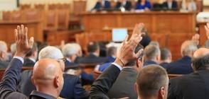 Протестиращи майки, депутати и ресорни министри - на среща в НС в четвъртък