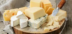 Сиренето и кашкавалът свалят холестерола
