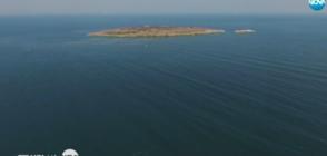 Темата на NOVA: Колко са потъналите кораби по дъното на Черно море?