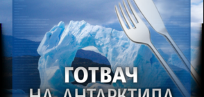 Търсят готвач за българската база на Антарктида (ВИДЕО)