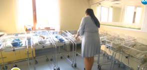 """""""Къси разкази"""": На какво се дължи митът за ниската раждаемост? (ВИДЕО)"""