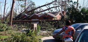"""Жертви и невъобразимо опустошение в САЩ след урагана """"Майкъл"""" (ВИДЕО+СНИМКИ)"""