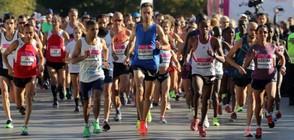 4 000 ще бягат на маратон в София, спират движението в центъра
