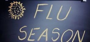 Тазгодишният грип се очаква в края на годината
