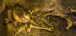 """Спасиха уникалния човешки скелет """"Лусия"""" oт опожарения музей в Рио"""