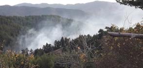 Пожарът в Родопите е овладян