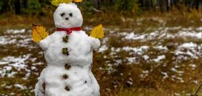 ЗИМАТА ИДВА: Сняг и студ до края на седмицата
