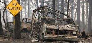 Броят на жертвите на пожарите в Калифорния се увеличи на 80 души