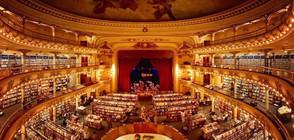 В СВЕТА НА КНИГИТЕ: Най-уникалните книжарници (ГАЛЕРИЯ)