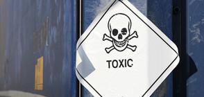 """Оксфордският речник избра """"токсичен"""" за дума на годината"""