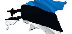 """И Естония каза """"не"""" на пакта на ООН за миграцията"""
