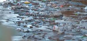 """""""Темата на NOVA"""": Какви са последиците от свръхупотребата на пластмаса?"""