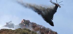 КАДРИ ОТ ДРОН: Опустошенията след пожарите в Калифорния (ВИДЕО)