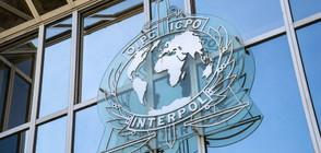 Интерпол спаси 50 деца от педофилска мрежа