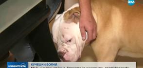 Мъж бе нахапан от куче, версиите за инцидента са противоречиви