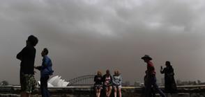 Силна пясъчна буря връхлетя Австралия