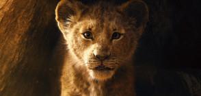"""Цар Лъв"" оглави боксофис класацията на Северна Америка"
