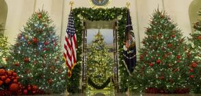 Мелания Тръмп представи пищната коледна украса в Белия дом (ВИДЕО)