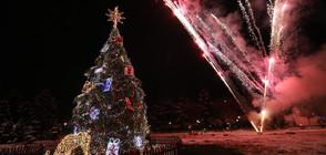Коледните елхи в София и Пловдив грейнаха (ВИДЕО+СНИМКИ)