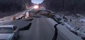 Земетресение от 7 по Рихтер в Аляска (ВИДЕО+СНИМКИ)
