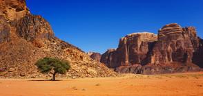 Червената пустиня Уади Рум - Марс на Земята (ГАЛЕРИЯ)