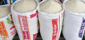 Биолози: Оризът е вреден, съдържа арсен