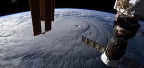 Космонавти на МКС започнаха експеримент за принтиране на живи тъкани