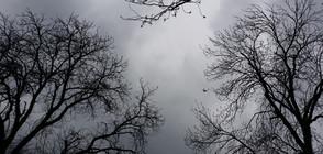 Отново валежи от понеделник